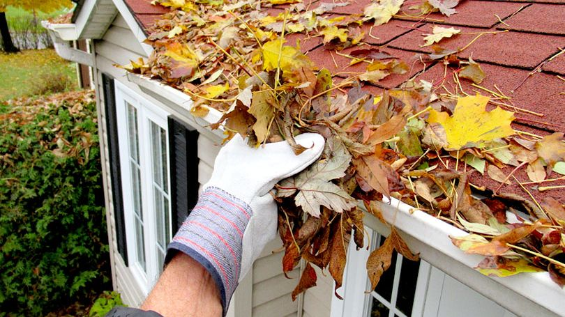 Tending Your Home This Fall